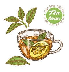hand drawn cup of tea herbal tea with lemon and vector image