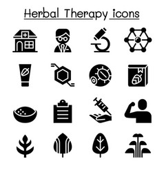 herbal therapy icon set vector image