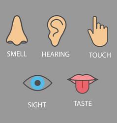 human senses icon flat vector image