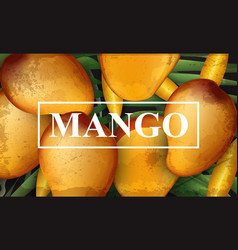 mango banner background bunch of fresh sweet vector image