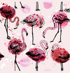 Seamless watercolor pattern with flamingo birds vector