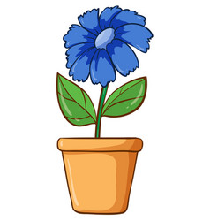 Single flower in clay pot vector