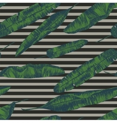 Seamless pattern with banana palm leaves Hand vector image vector image