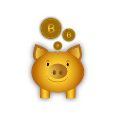 an isolated piggy bank with a vector image