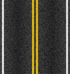 Asphalt road with marking lines vector image