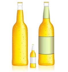 bottle of beer low alcohol beverage vector image