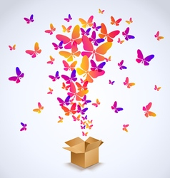 Box and butterfly spring 2016 vector