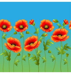 bright background with flowers curb poppy vector image