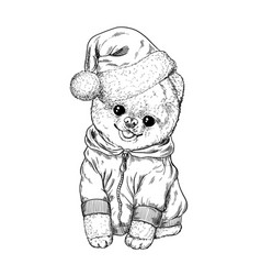 pomeranian toy dig dressed in hoodie and santa hat vector image