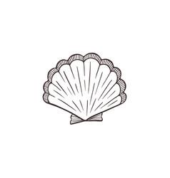 Seashell sketch collection vector