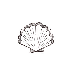 seashell sketch collection vector image