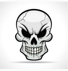 skull on white background vector image