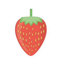 Strawberry fruit food healthy vector