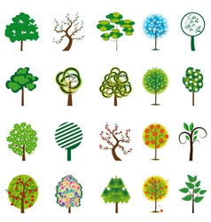 collection of trees for design vector illustration vector image