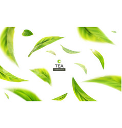 3d with green tea leaves in motion vector image vector image