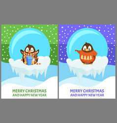 cheerful penguin in sweater and scarf vector image
