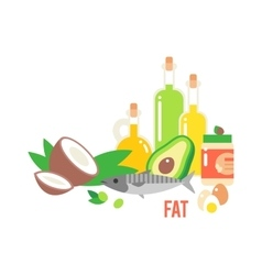 Different Kind Of Healthy Fat vector image