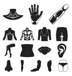 Part of the body limb black icons in set vector