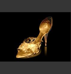 shoe on black vector image