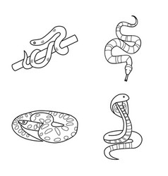 Snake and creepy icon vector