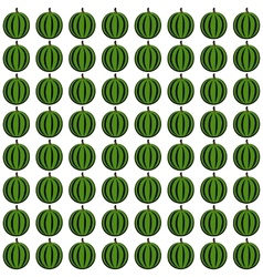 watermelone pattern vector image