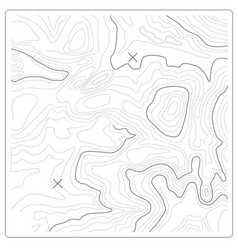 Topographic map of relief and land heights vector