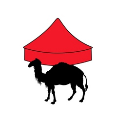 camel in circus vector image