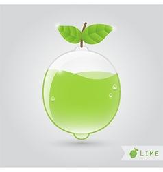 lime fruit juice vector image