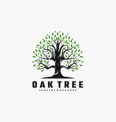 Logo oak tree color style vector
