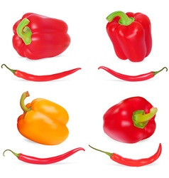 Pepper Icon Set vector image