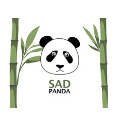 sad panda with bamboo vector image