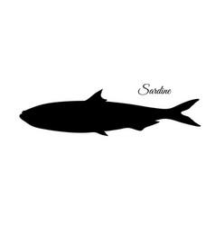 silhouette of sardine vector image