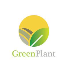 circle green plant logo vector image