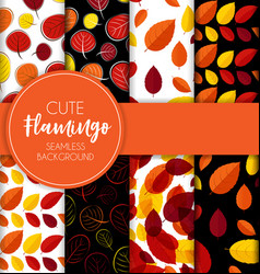 autumn leaves seamless pattern collection set vector image