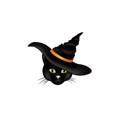 cat in a witch hat black looking at camera vector image