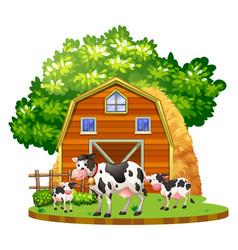Cows live on farmyard vector