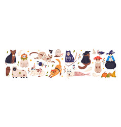 cute cats in spooky halloween costumes set funny vector image