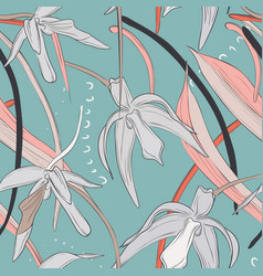 hand drawn colorful orchid blooming flowers vector image