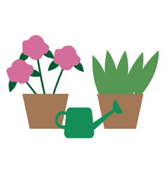 house plants in pots watering can flowers vector image