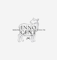 merino wool abstract sign symbol or logo vector image