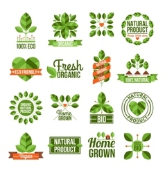 Organic And Natural Labels Set vector image