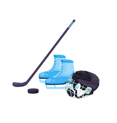 sport equipment isolated vector image