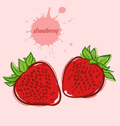 hand draw of strawberry vector image vector image