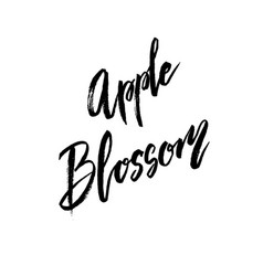 apple blossom spring concept lettering vector image