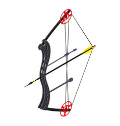 Archery sport icon isometric style vector