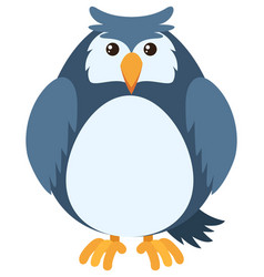 blue owl with round body vector image