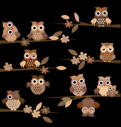 cute brown cartoon owls in the night vector image