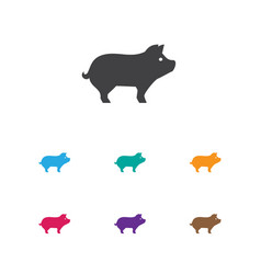 Of animal symbol on hog icon vector