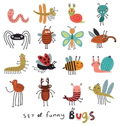 set funny bugs vector image