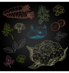 Set hand-drawn food ingredients on chalkboard vector image